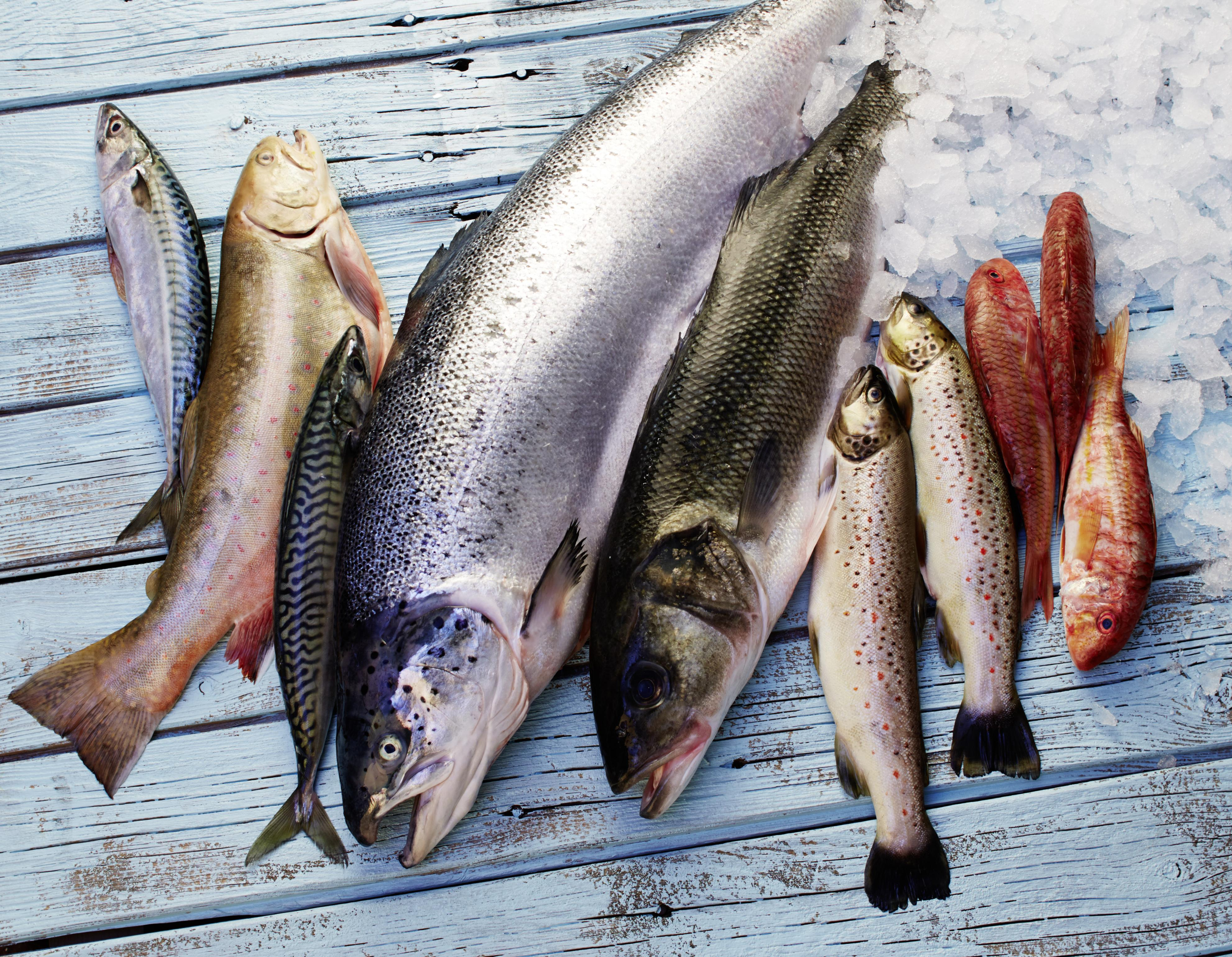 Karfreitag Fischmenüs